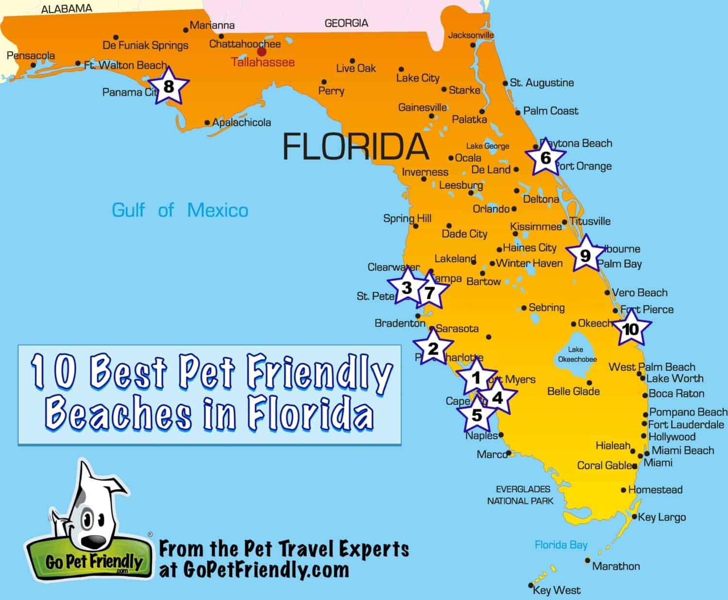10 Of The Best Pet Friendly Beaches In Florida - Map Of Best Beaches In Florida
