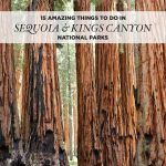 15 Amazing Things To Do In Sequoia National Park + Kings Canyon   Sequoias In California Map