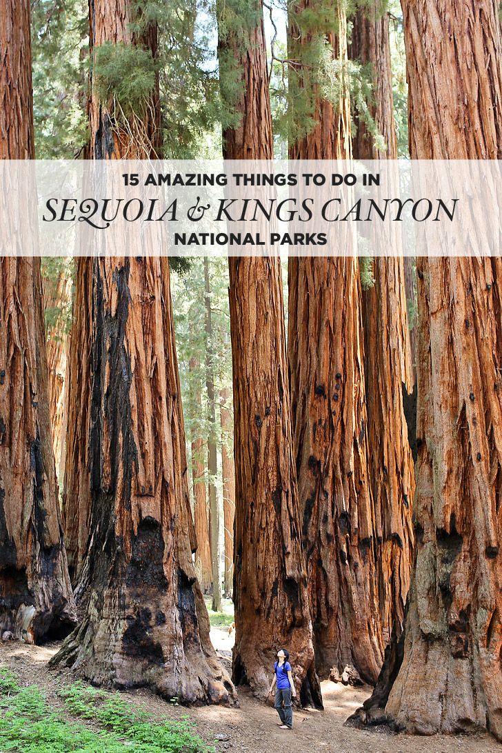 15 Amazing Things To Do In Sequoia National Park + Kings Canyon - Sequoias In California Map