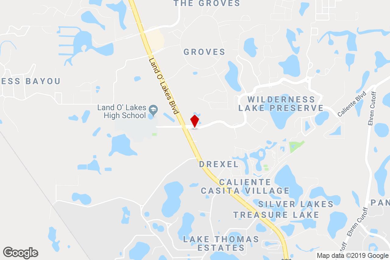 20646 Wilderness Lakes Blvd., Land O Lakes, Fl, 34637 - Office - Land O Lakes Florida Map