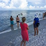A Local's Guide To The 7 Best Beaches In Naples, Florida   Naples Florida Beaches Map