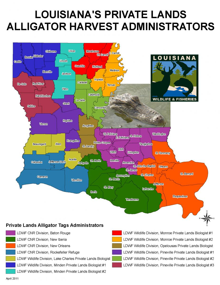 Alligator Hunting | Louisiana Department Of Wildlife And Fisheries - Alligators In Florida Map