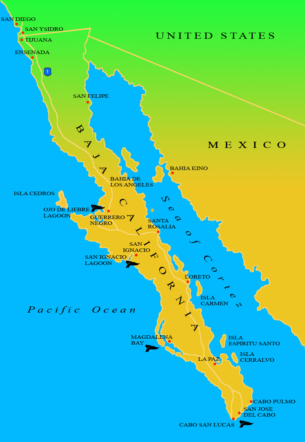 Baja Ecotours | Maps Of Baja California - Map Of Baja California Mexico