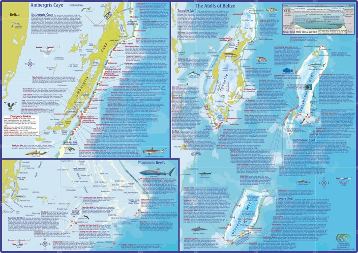Florida Dive Sites Map
