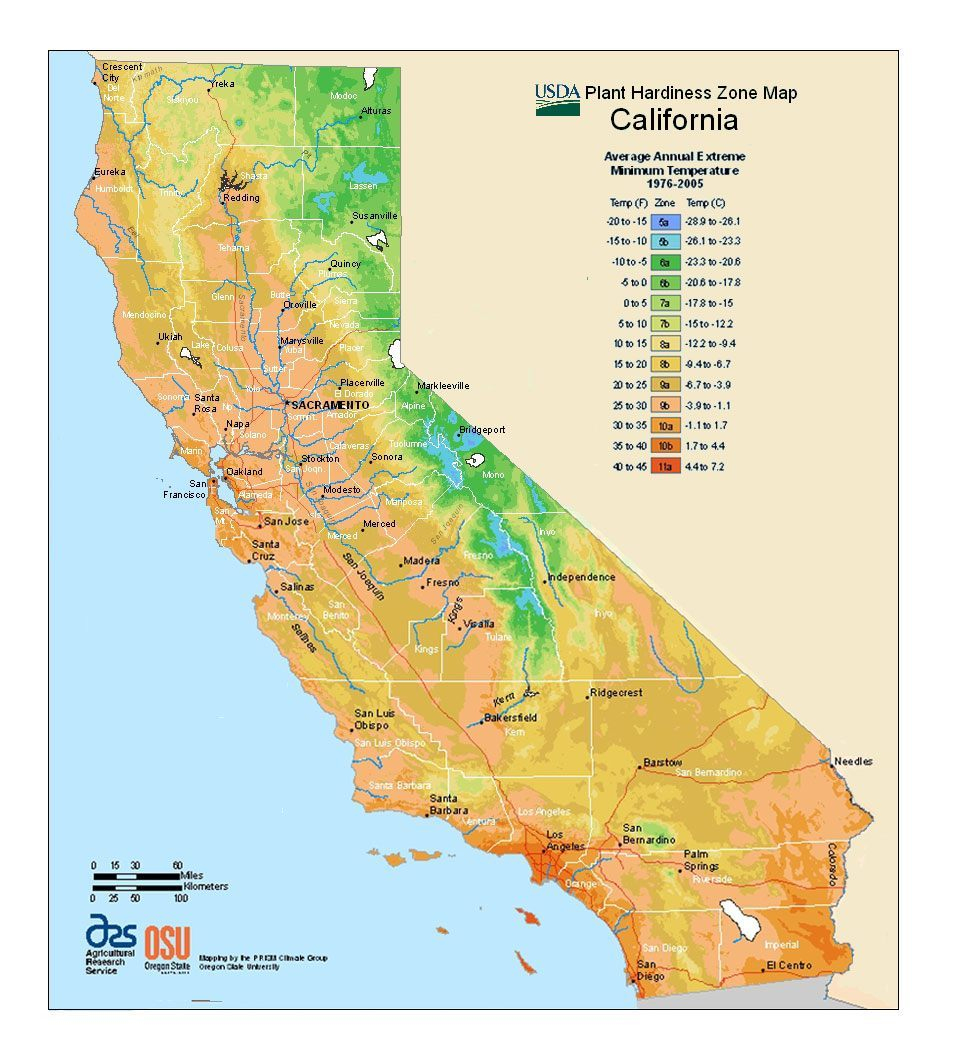 Best Selling California Trees & Shrubs For Sale   Nature Hills - Plant Zone Map California