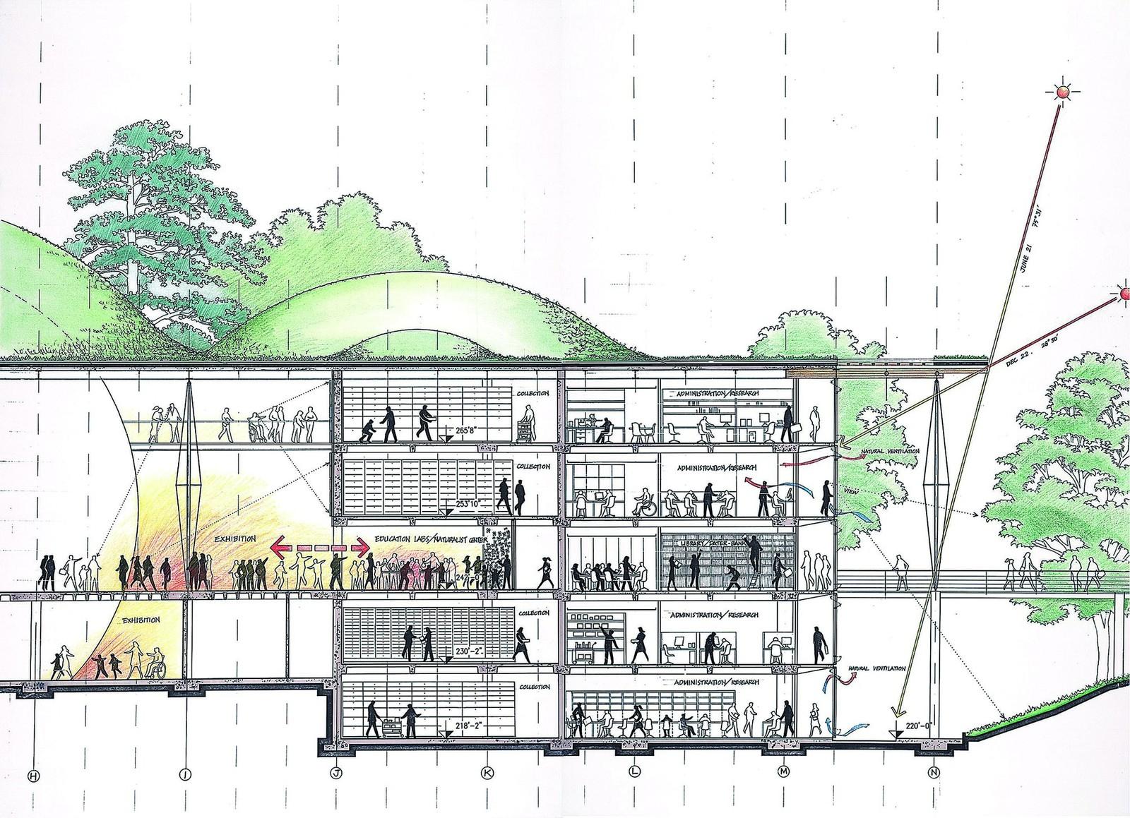 California Academy Of Sciences | Renzo Piano Building Workshop - California Academy Of Sciences Map