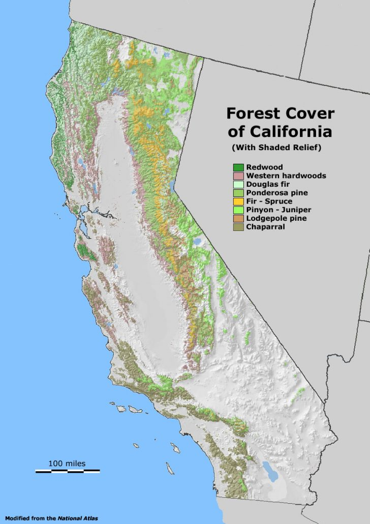 Redwood Forest California Map
