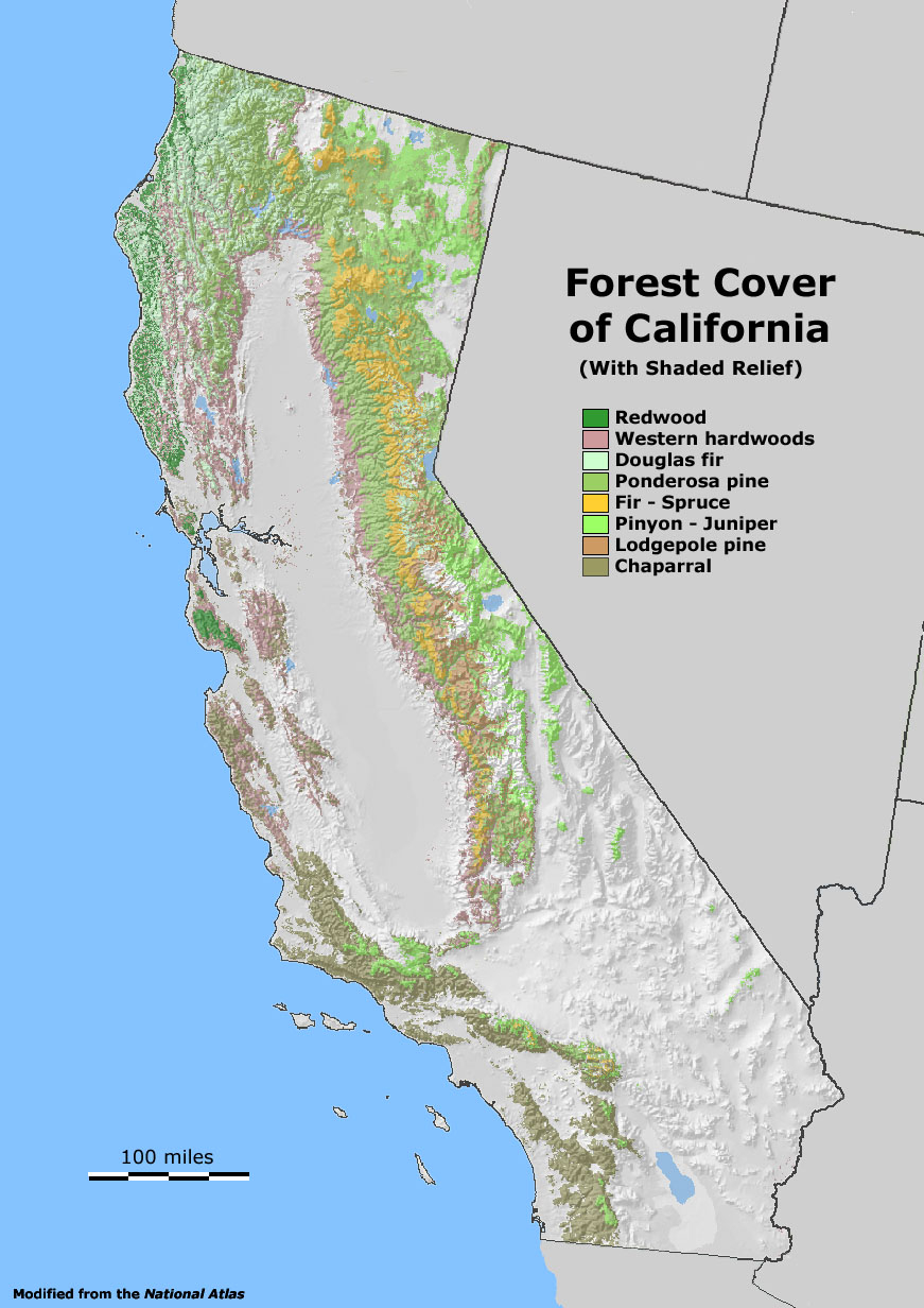 California Redwood Forest Map - Klipy - Redwood Forest California Map