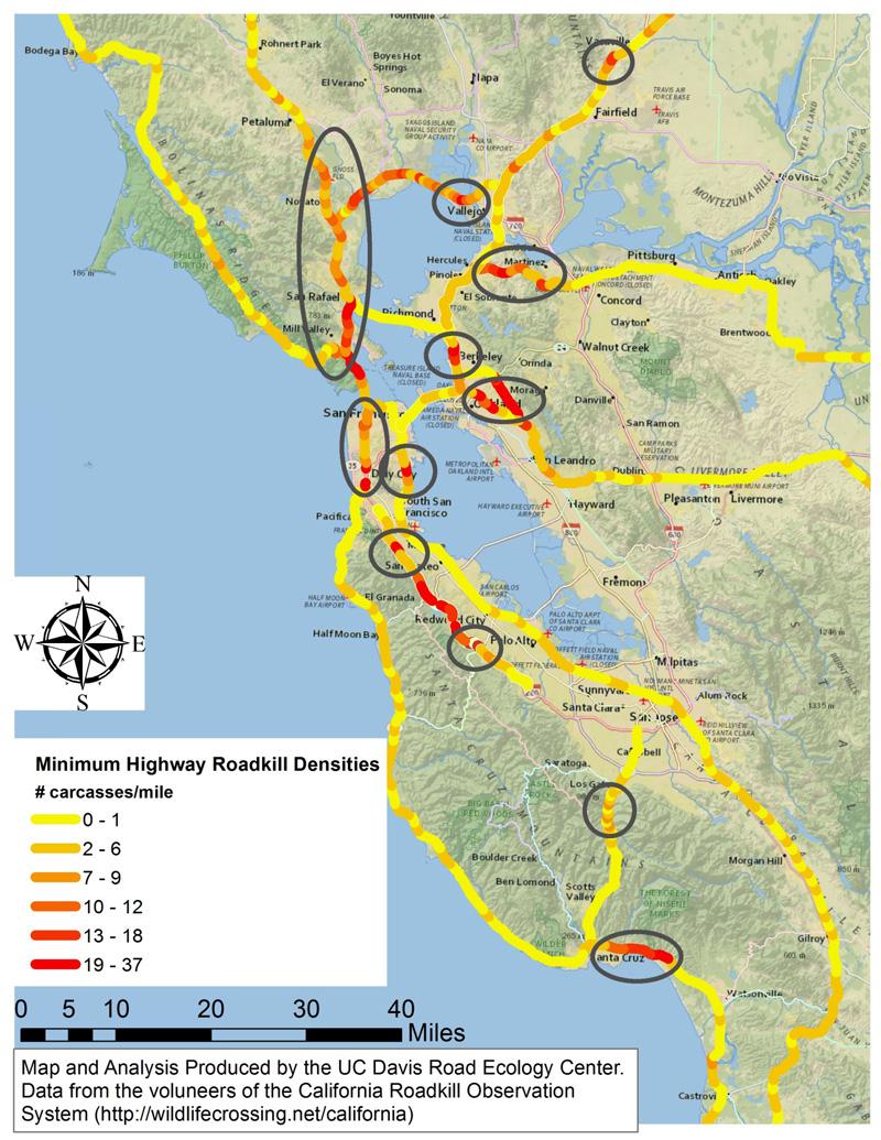 California Wildlife - Ecosia - Southern California Toll Roads Map