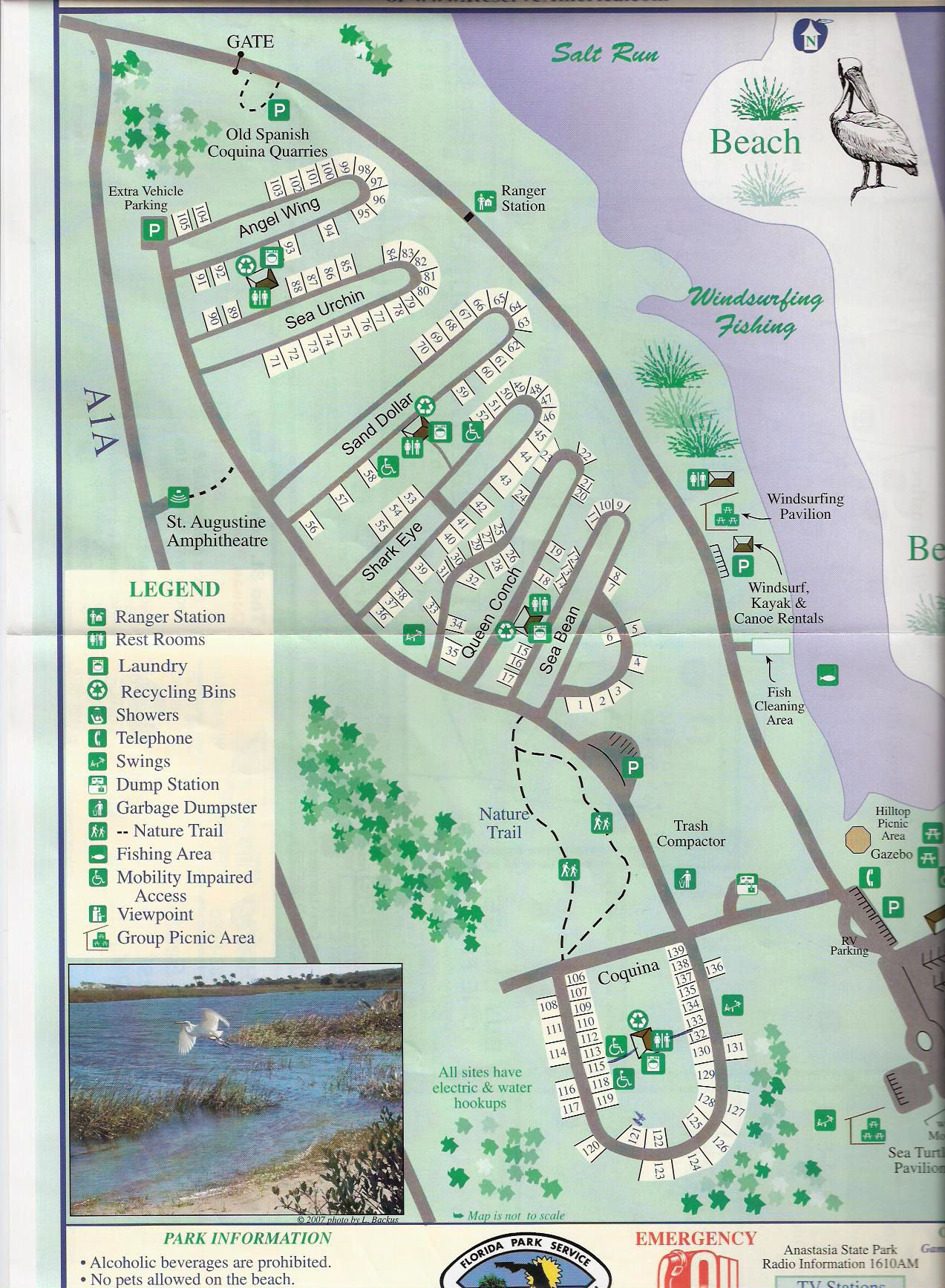 Campground Map - Anastasia State Park - St. Augustine - Florida - Florida Tent Camping Map