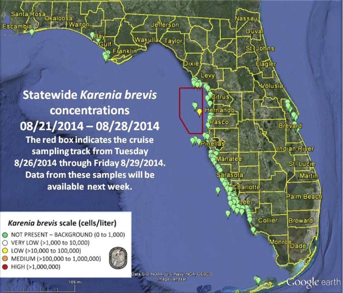 Captiva Fishing Report: No Red Tide ~ Sanibel, Captiva, North - Current Red Tide Map Florida
