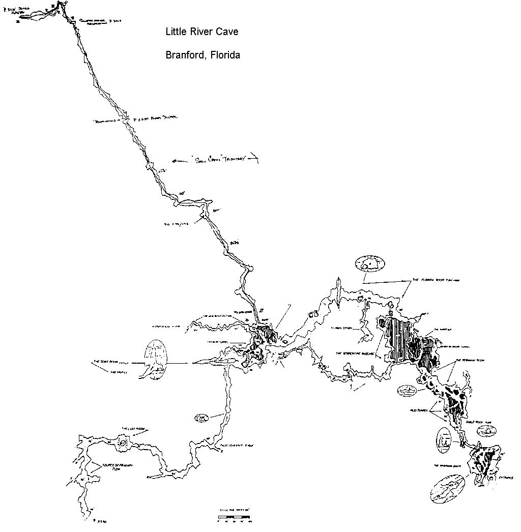 Caveatlas » Cave Diving » United States » Little River - Florida Cave Diving Map