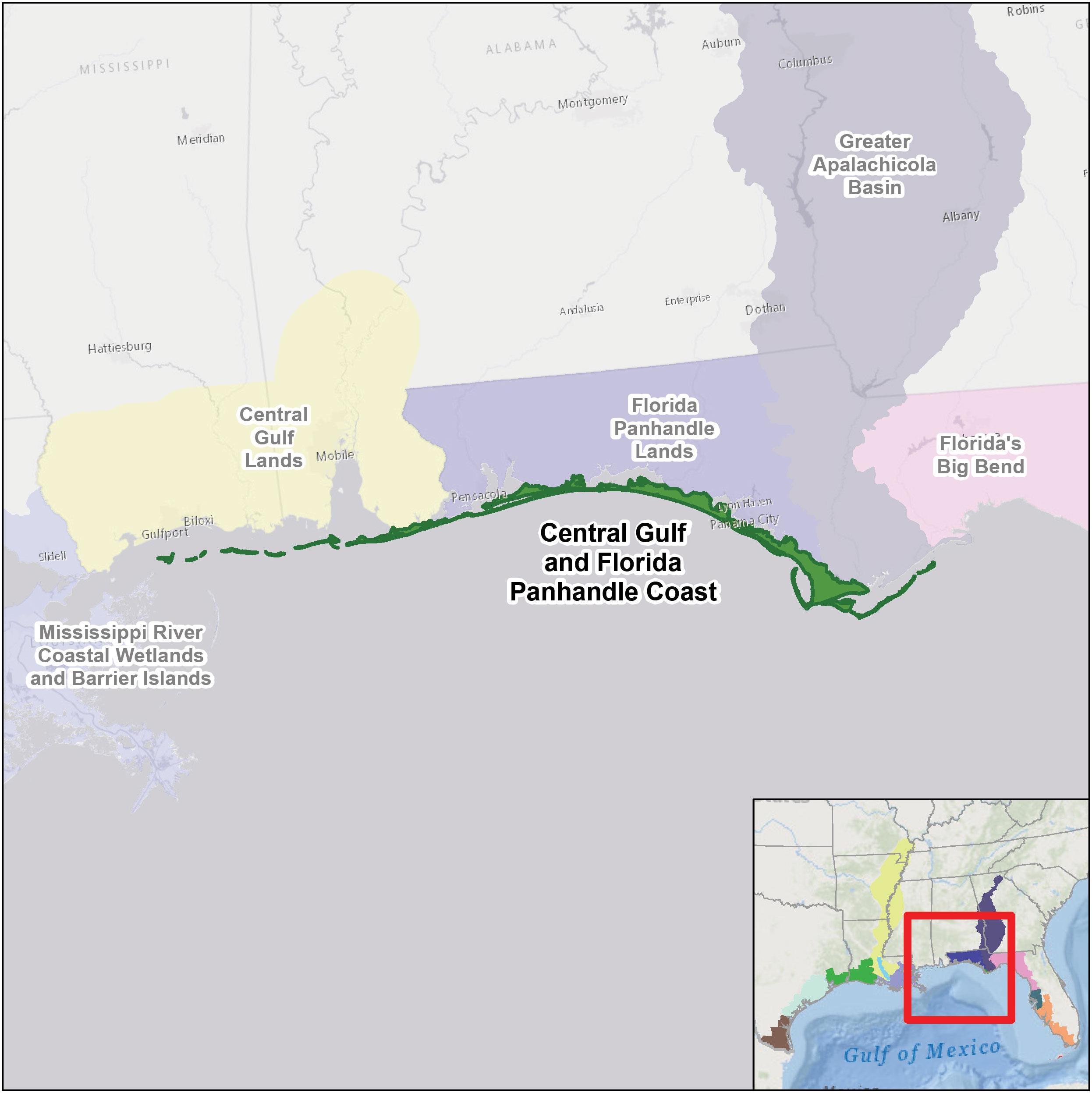 Central Gulf And Florida Panhandle Coast   U.s. Fish & Wildlife Service - Map Of Florida Panhandle Gulf Coast