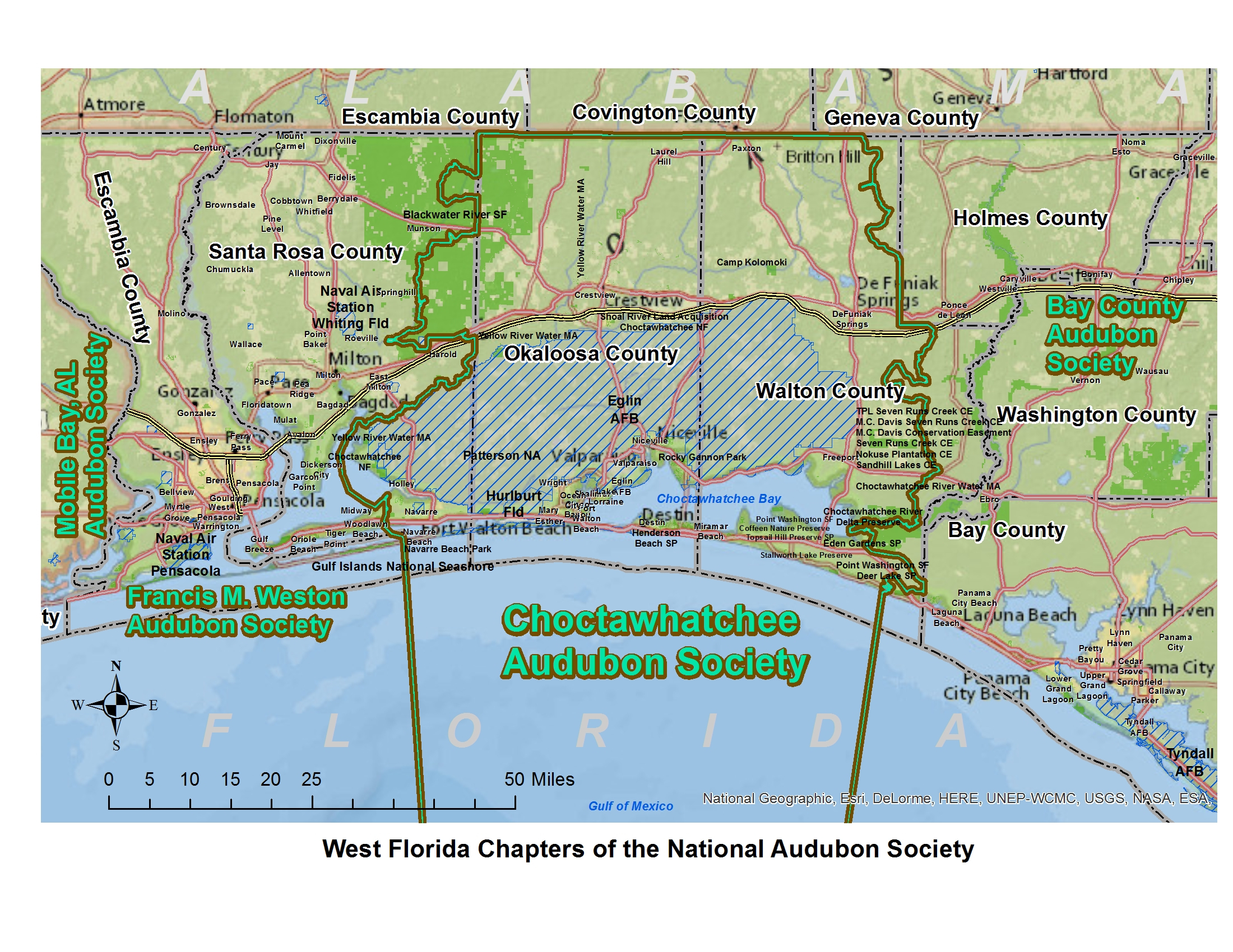 Choctawhatchee Audubon Society | Bird Hub - Great Florida Birding Trail Map