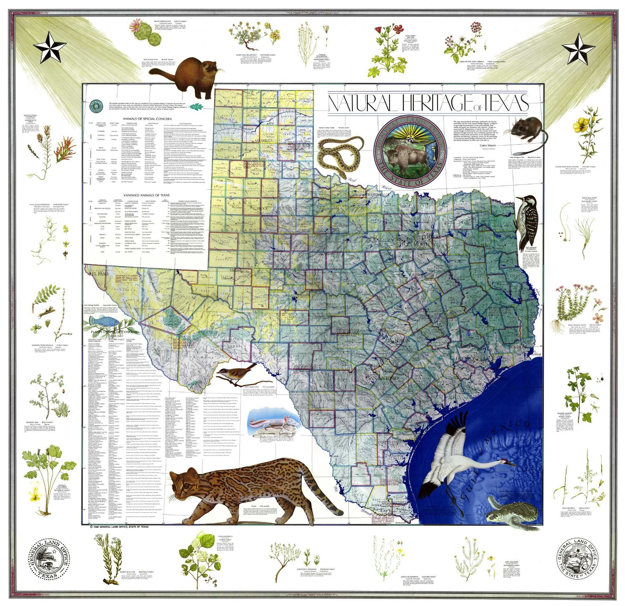 Conserving History With Map Sales | San Antonio | Map, Texas, Map Store - Map Store Austin Texas