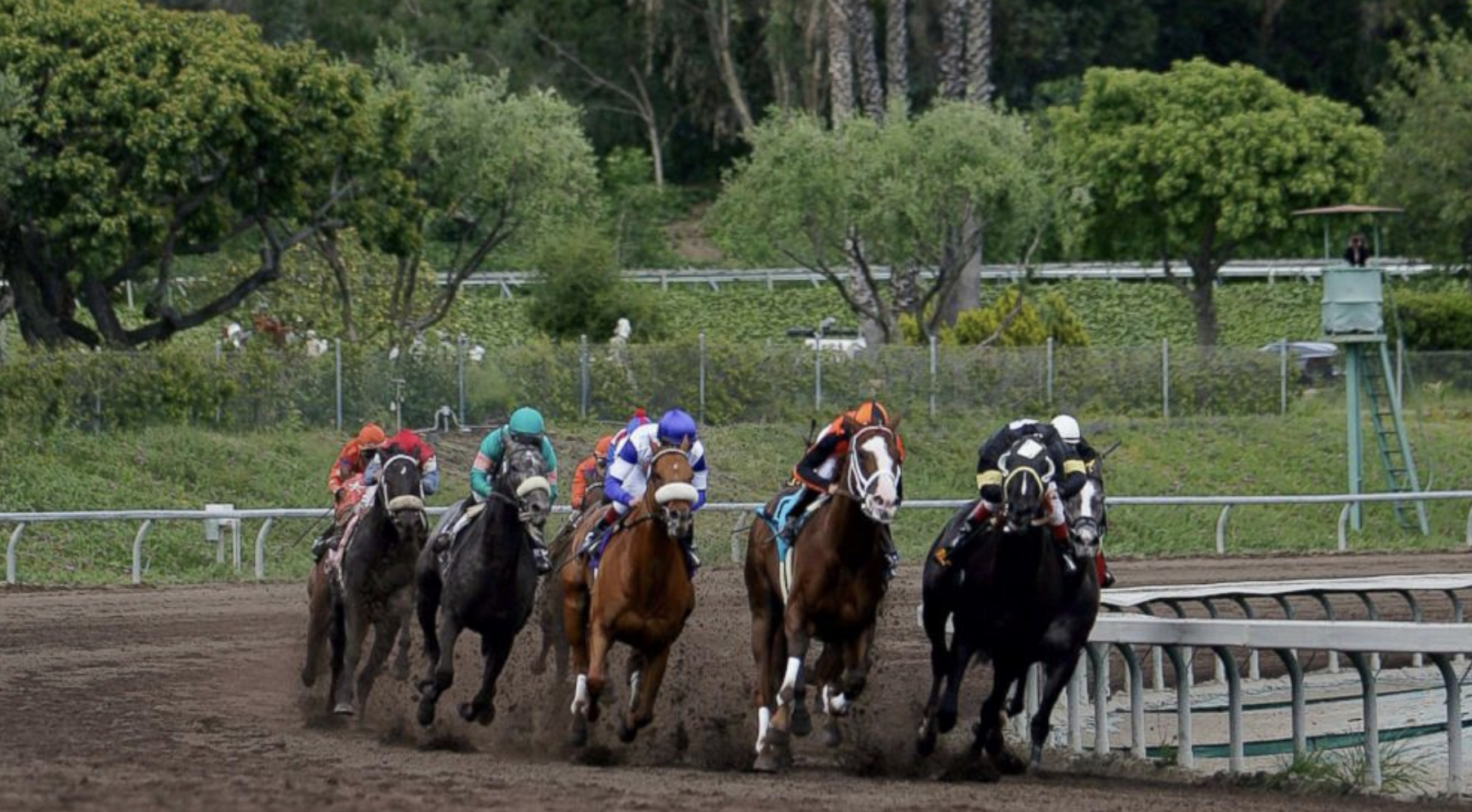 Death Toll At California Horse Track Rises To 19 As Employees Test Soil - Horse Race Tracks In California Map