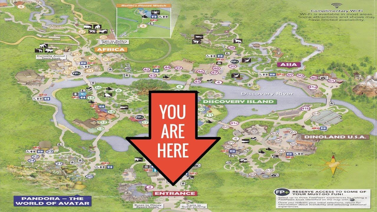 Disney's Animal Kingdom 2017 Map Walking Tour - Youtube - Animal Kingdom Florida Map