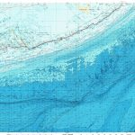 Download Topographic Map In Area Of Key West, Marathon, Layton   Florida Keys Topographic Map