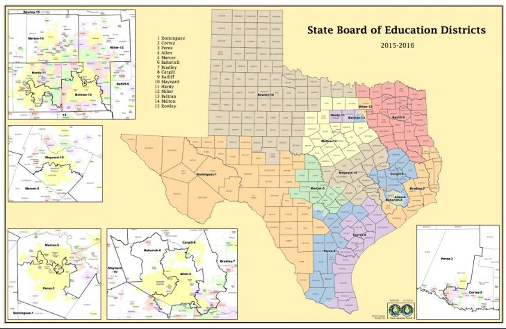 Texas State District Map