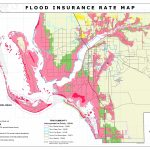 Firm Map Florida Flood Insurance Rate Map Florida Perfect Firm Maps   Cape Coral Florida Flood Zone Map