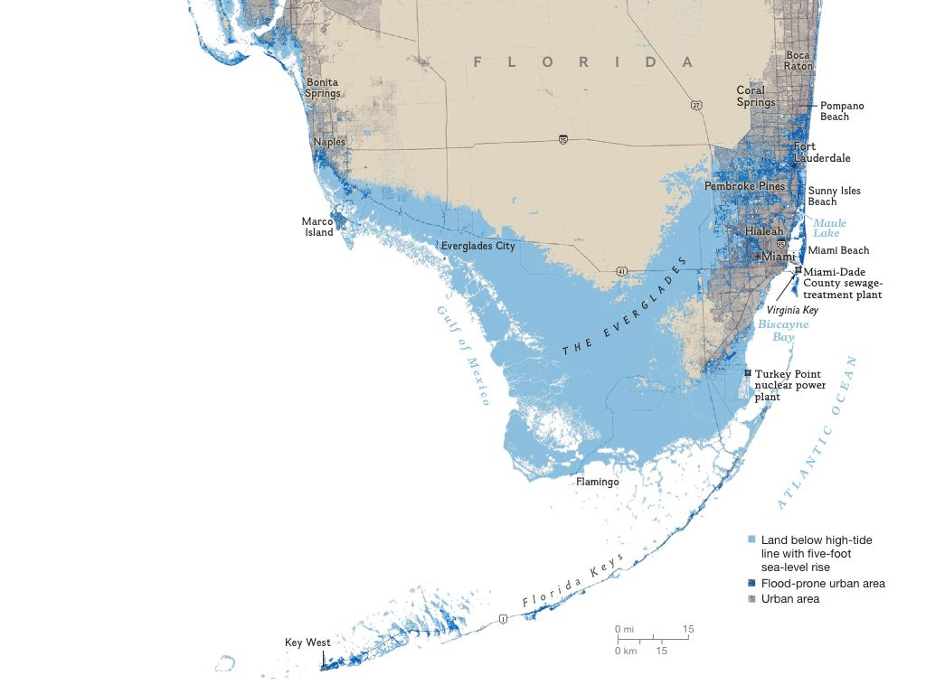 Florida Areas At Risk To A Five Foot Sea Rise | Maps | National - Florida Sea Level Rise Map