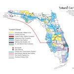 Florida Natural Gas Utilities · Avalon Energy   Gas Availability Map Florida