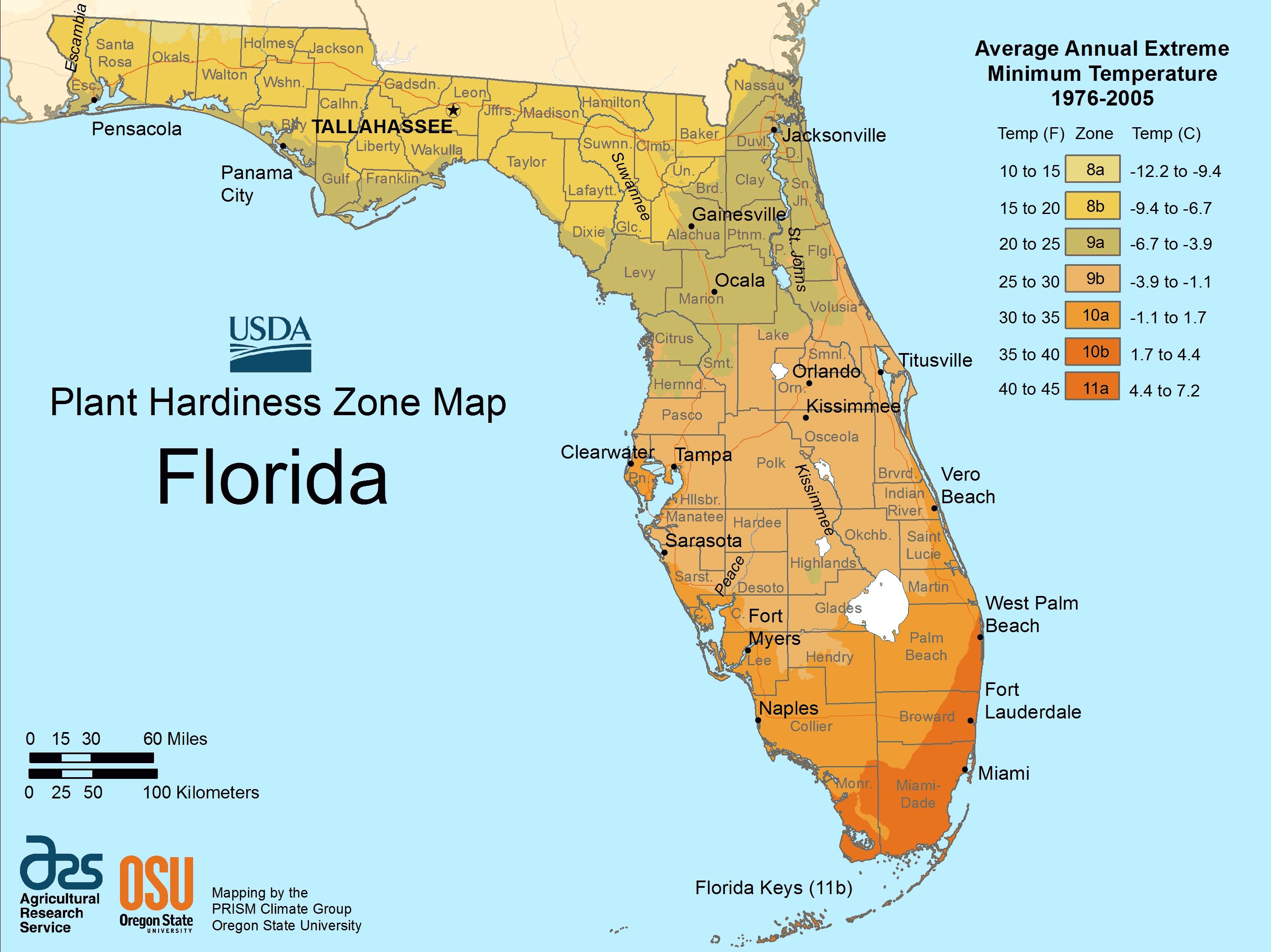 Florida Plant Hardiness Zone Map Large Map | Outdoors | Florida - Plant Zone Map Florida