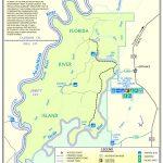 Florida River Island | Northwest Florida Water Management District   Northwest Florida Water Management District Map