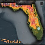 Florida Topography Map | Colorful Natural Physical Landscape   Florida Elevation Map