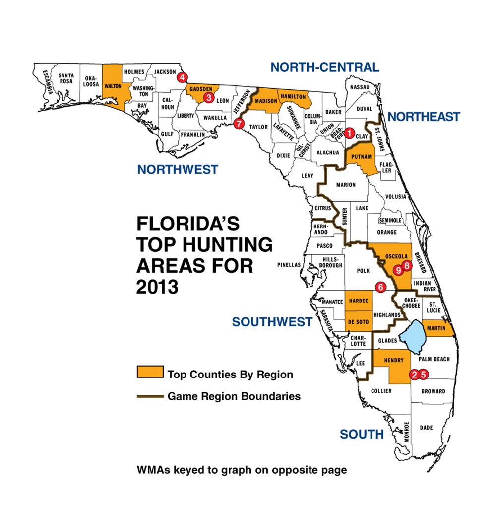 Florida Whitetail Experience - Huntingnet Forums - Florida Wild Hog Population Map