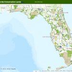 Fnai   Google Maps Tampa Florida