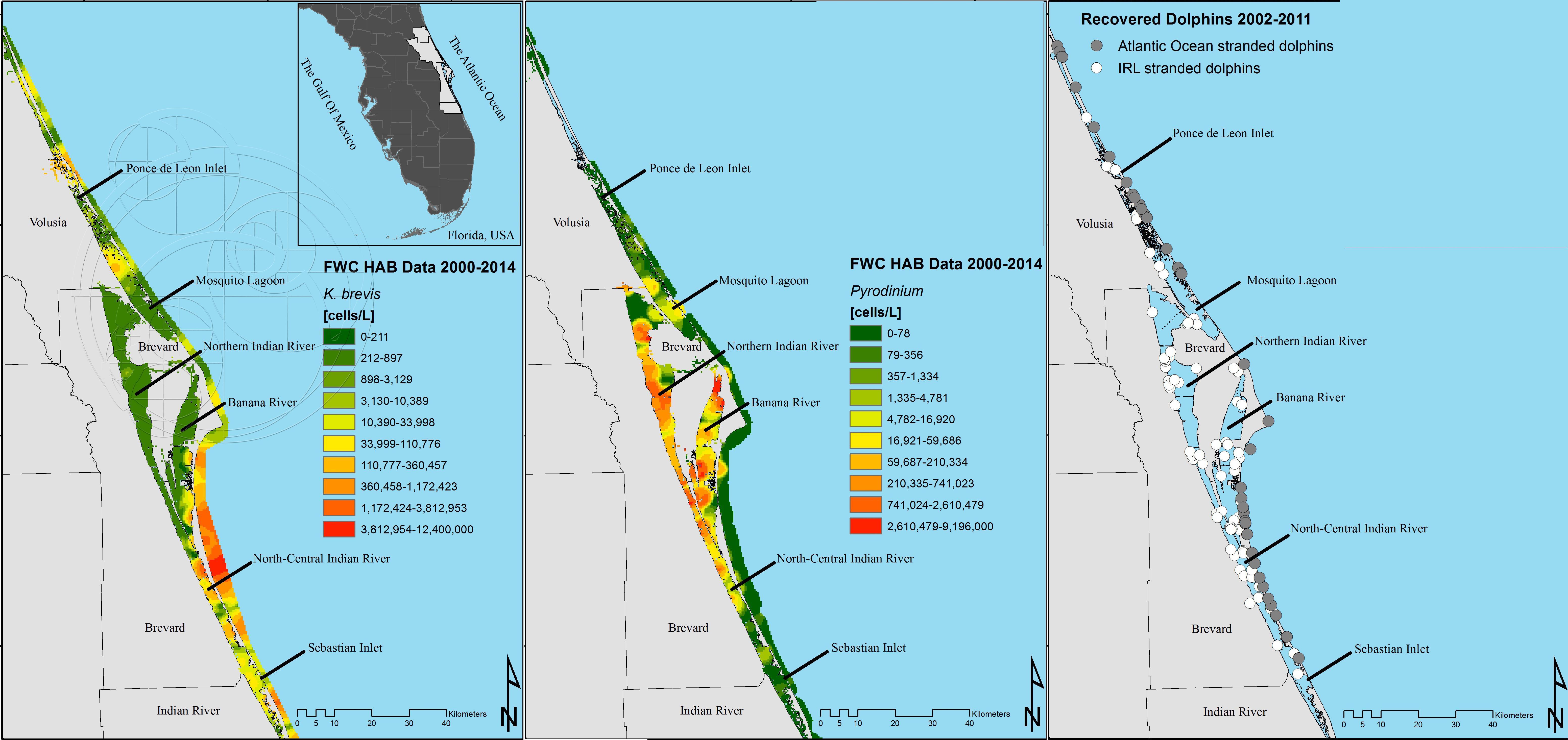 Food Web Dynamics Of Harmful Algal Toxins In Florida Dolphins - Florida Blue Green Algae Map