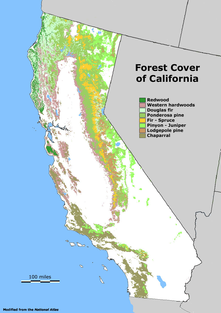 Forests Htm Map O California Road Map National Forest Map California - California Forests Map