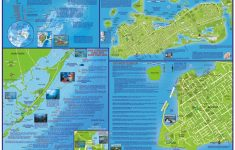 Franko Maps Florida Keys Dive Creature Adventure Guide 18 X 26 Inch – Florida Keys Dive Map