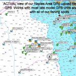 Garmin Saltwater Fishing Maps « Guide To Coastal Georgia Fishing   Top Spot Fishing Maps Florida
