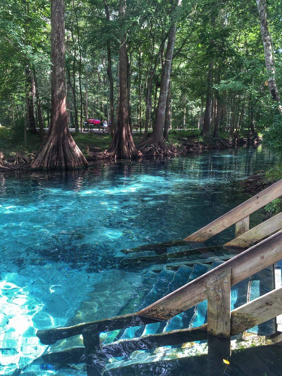Ginnie Springs In High Springs, Florida | Travel Usa - Ginnie Springs Florida Map