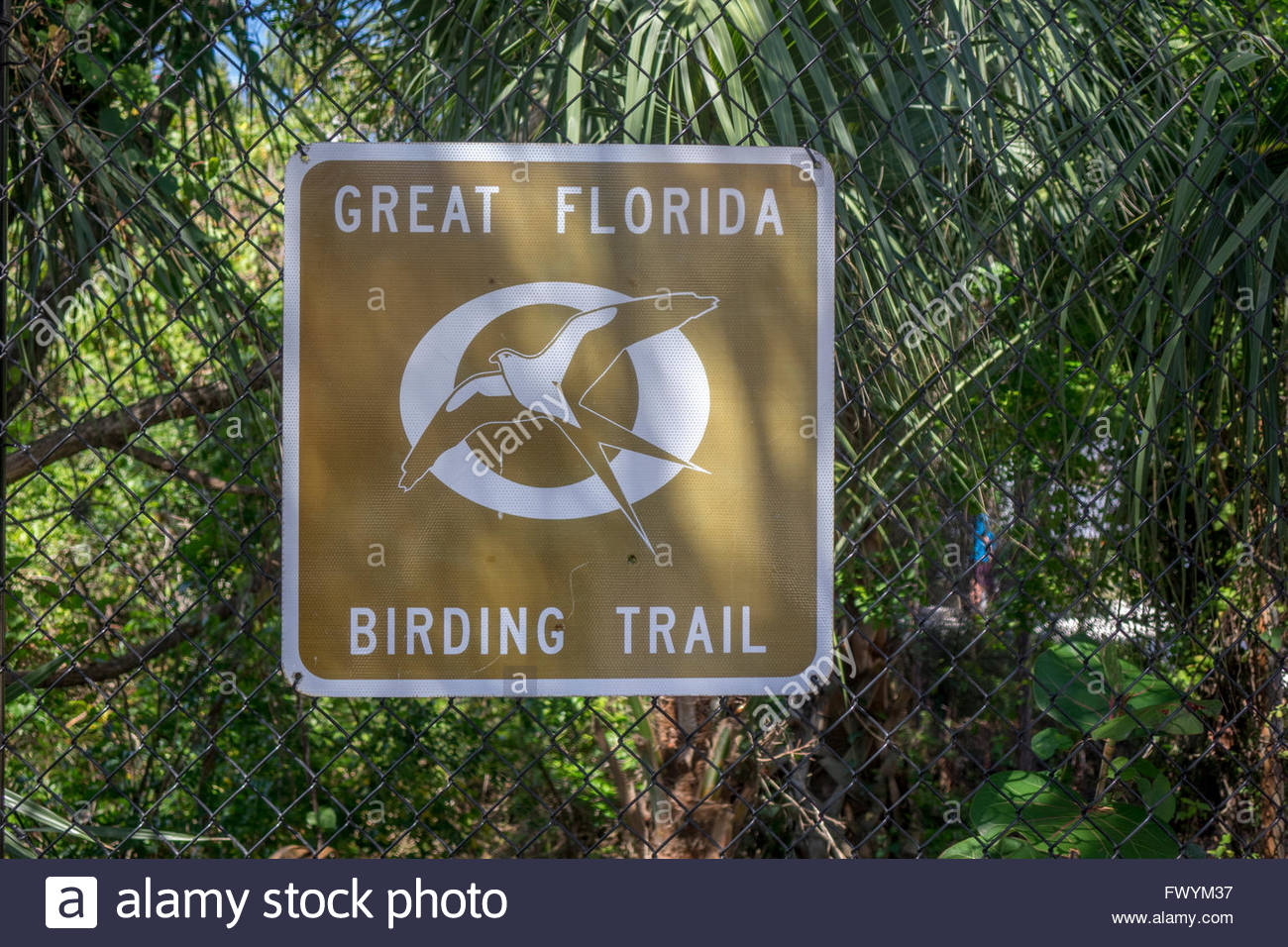 Great Florida Birding Trail Stock Photos & Great Florida Birding - Great Florida Birding Trail Map