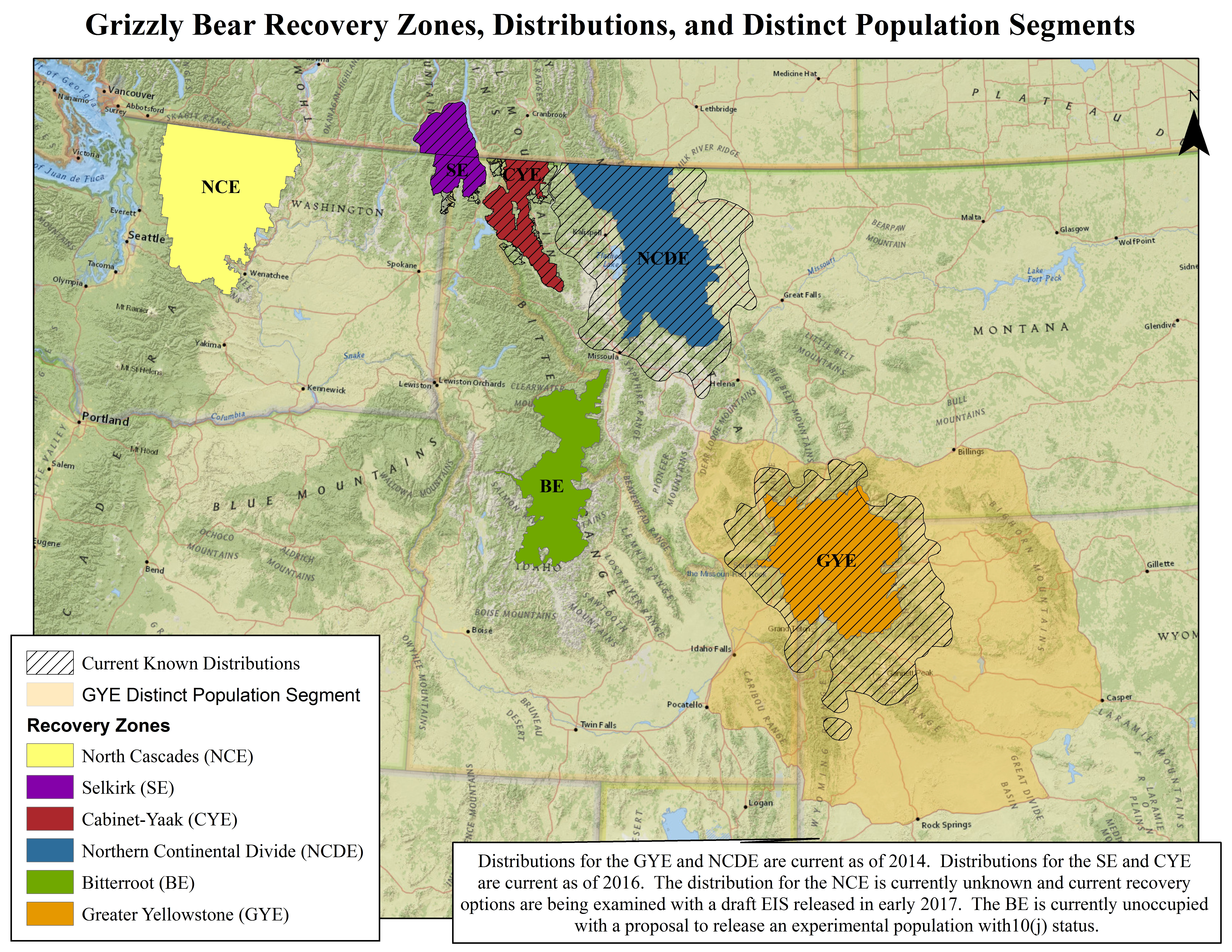 Grizzly Bear - Bears In California Map