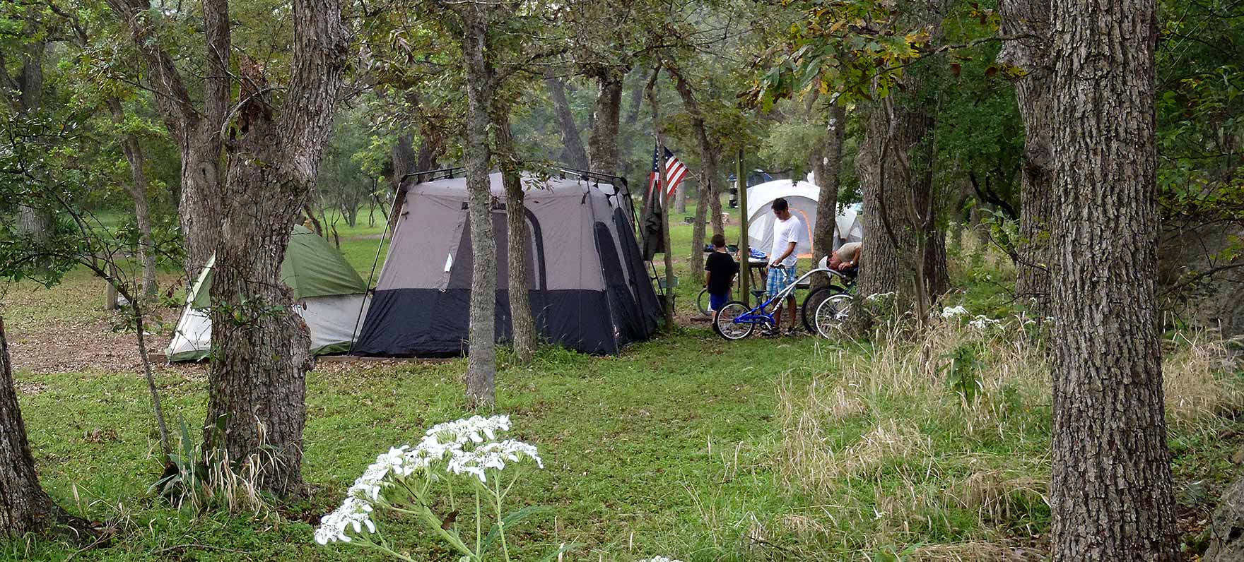 Guadalupe River State Park — Texas Parks & Wildlife Department - Texas State Parks Camping Map