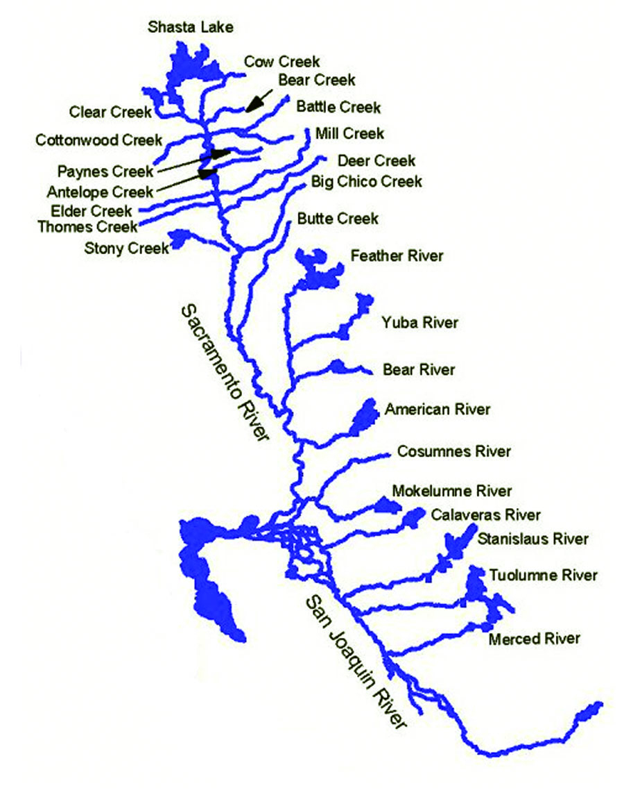 H417Exam2 - California Waterways Map