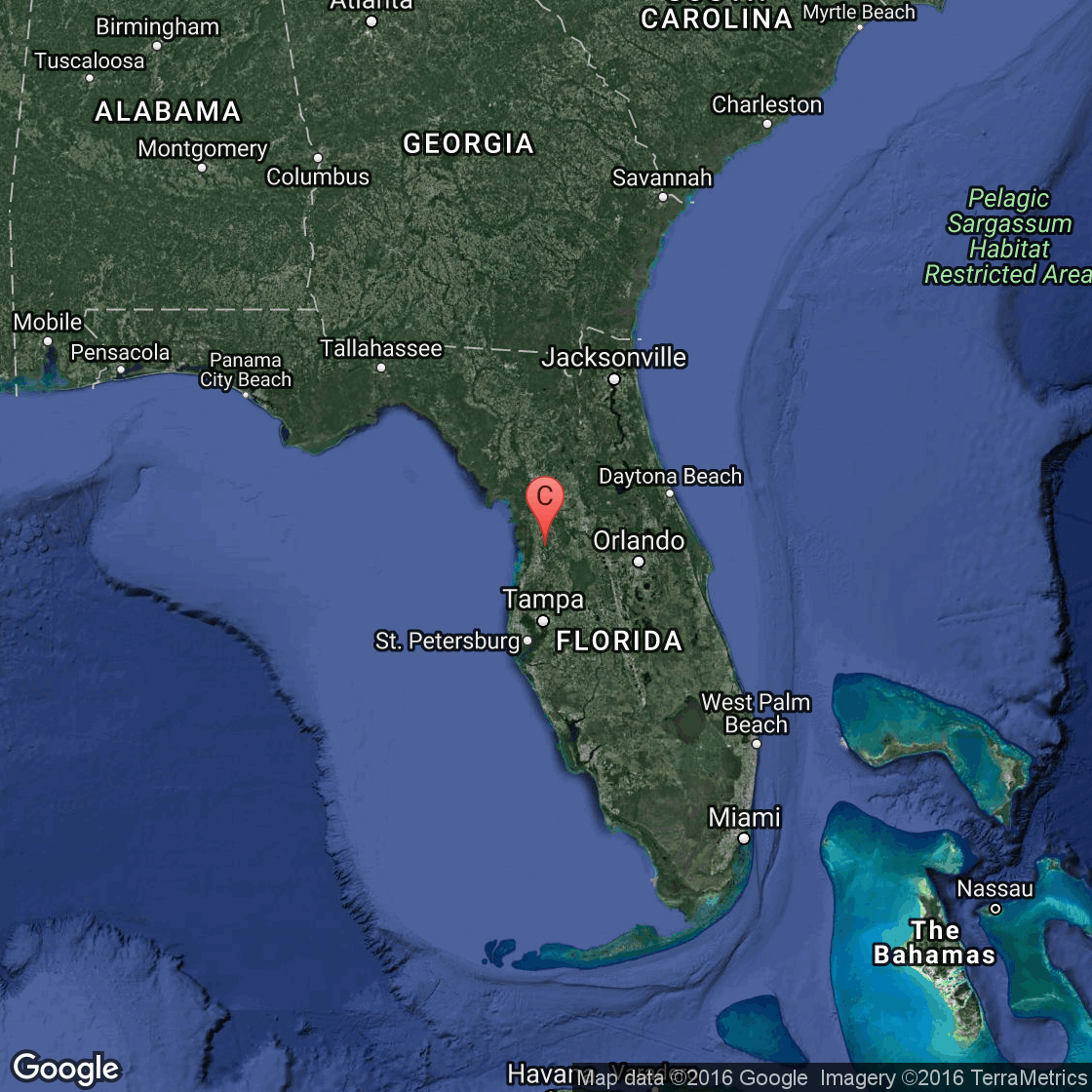 How To Walk On Trails Near Belleview, Florida | Usa Today - Belleview Florida Map