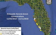 Is There Red Tide Off Anna Maria Island, Fl? | Bradenton Herald – Anna Maria Island Florida Map