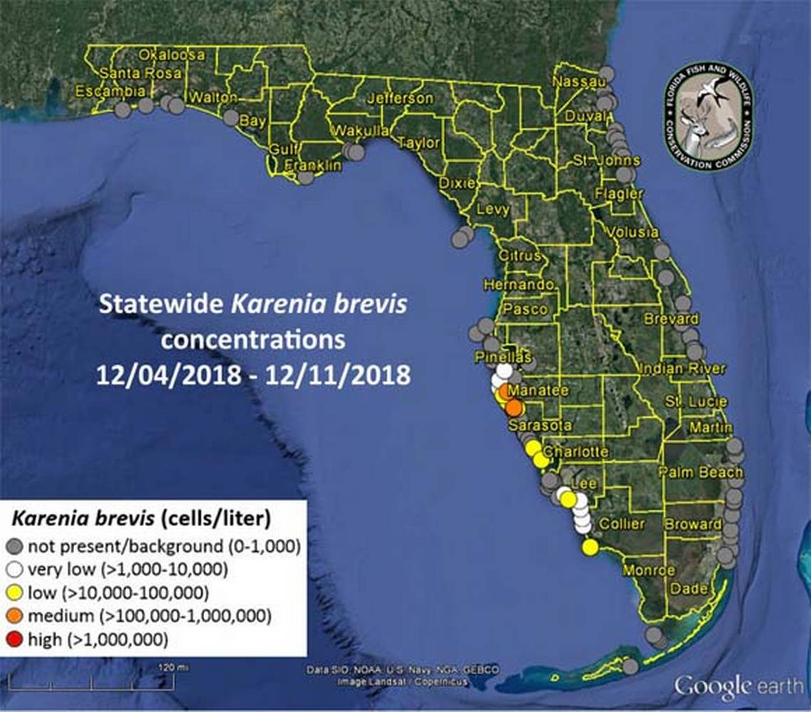 Is There Red Tide Off Anna Maria Island, Fl? | Bradenton Herald - Anna Maria Island Florida Map
