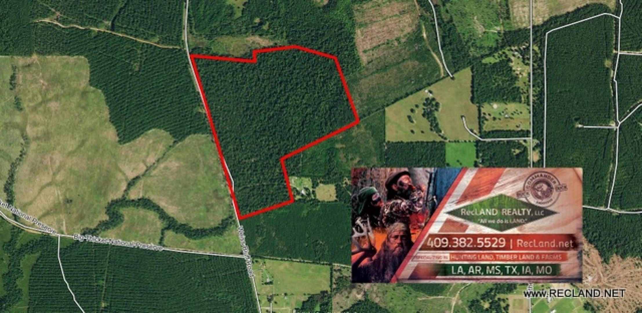 Jasper County Texas Acreage & Land For Sale | Landhub - Texas Land For Sale Map