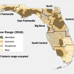 Lesson Ten: Oh Where, Oh Where Is The Florida Black Bear?   Black   Florida Snake Problem Map
