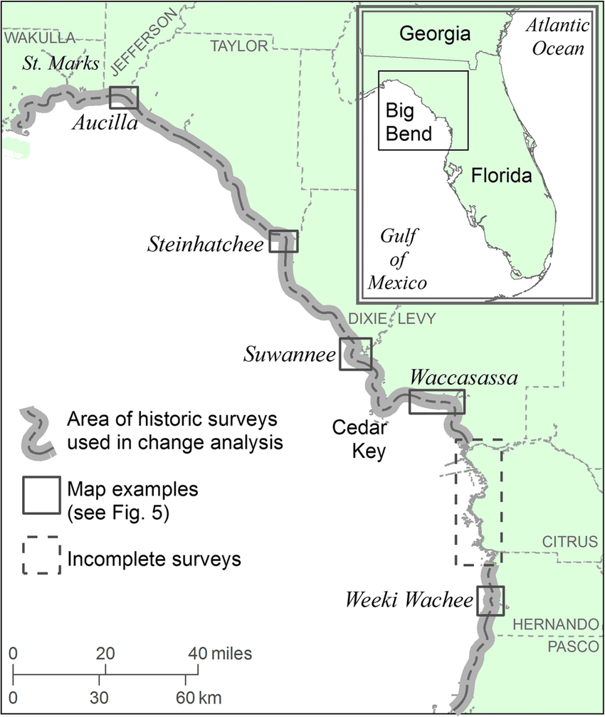 Location Map Of Florida Big Bend Marsh Coast On The Gulf Of Mexico - Big Map Of Florida
