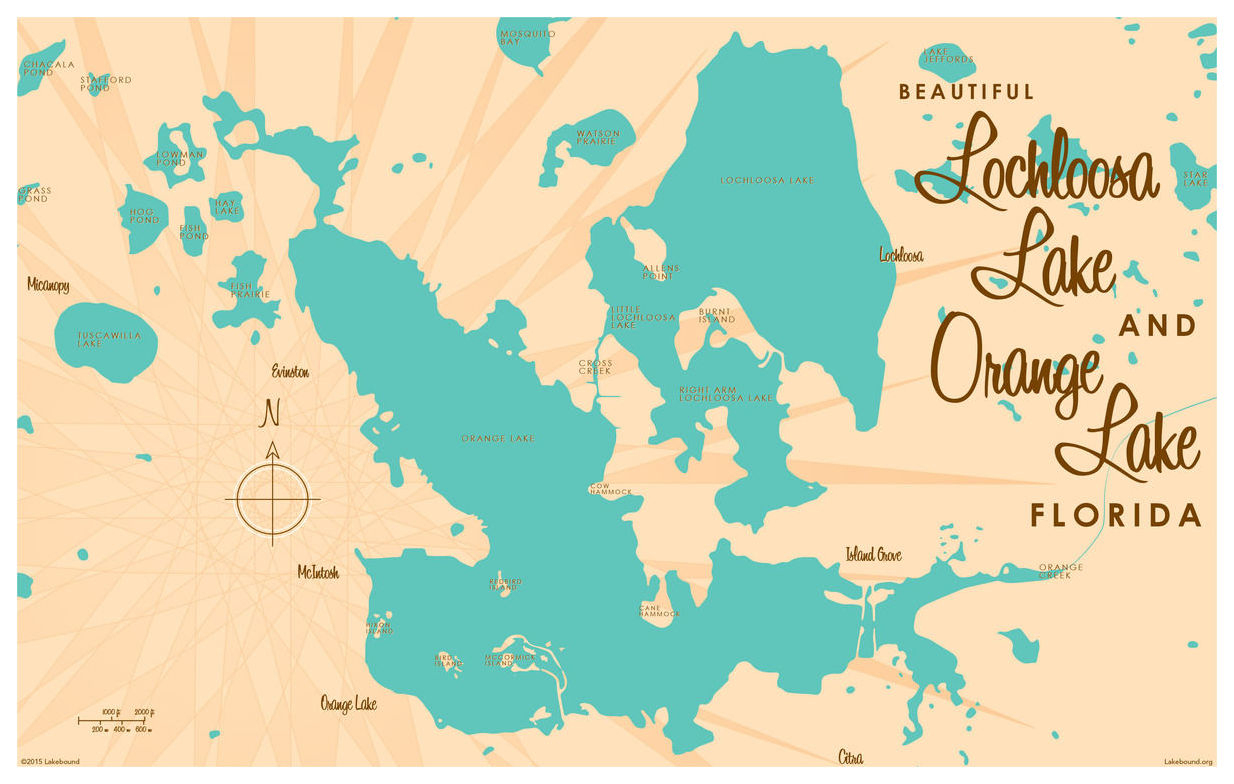 Lochloosa & Orange Lakes Florida Map Vintage-Style Art Print - Orange Lake Florida Map