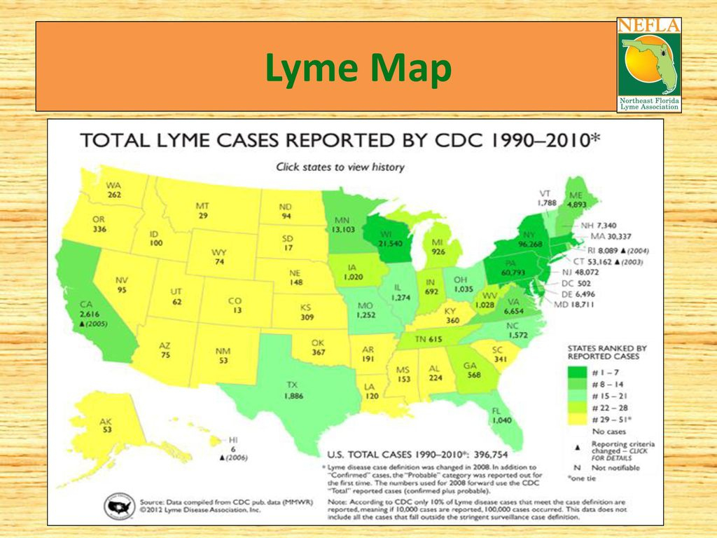 Lyme Disease Prevention And Education - Ppt Download - Lyme Disease In Florida Map