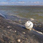 Map Shows Popular U.s. Beaches Contaminated With Fecal Bacteria   Florida Beach Bacteria Map 2018