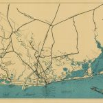 Mapping Texas: The Gulf Coast – Save Texas History – Medium   Texas Tree Map